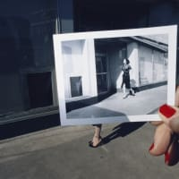 Amon Carter Museum of American Art presents The Polaroid Project: At the Intersection of Art and Technology