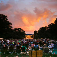 Fort Worth Symphony Orchestra Concerts in the Garden