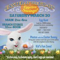 Austin photo: Events_ryan_university co-op_easter egg hunt_mar 2013_promo