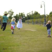 Haak Vineyards & Winery's Family Fun Day