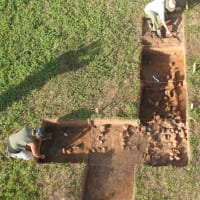 International Archeology Day