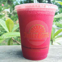 JuiceLand Recovery Punch