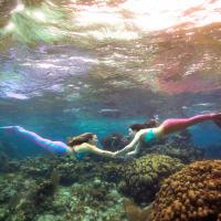 Sirenalia presents Sirenalia Mermaid Fundraiser for San Marcos River Foundation