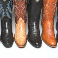 Tony Lama Signature Series Collection Rodeo Trunk Show and Designer Appearance