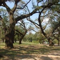 Places-Unique-Elizabeth Baldwin Park-path-1