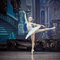 National Ballet of Ukraine