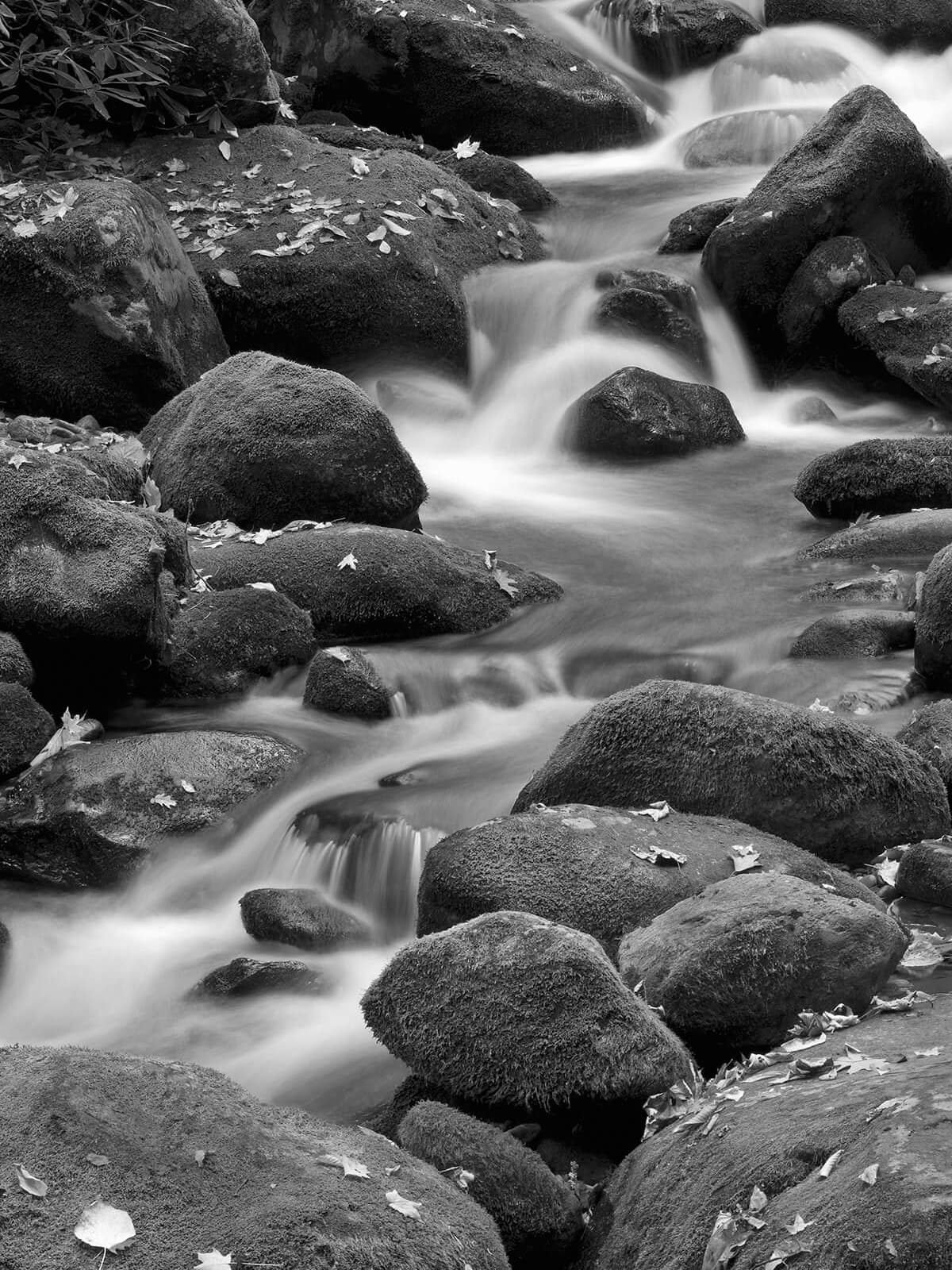 Mark Burns photo of Roaring Fork Branch at Great Smoky Mountain National Park