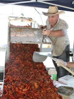 22nd Annual Louisiana Swamp Thing & Crawfish Festival