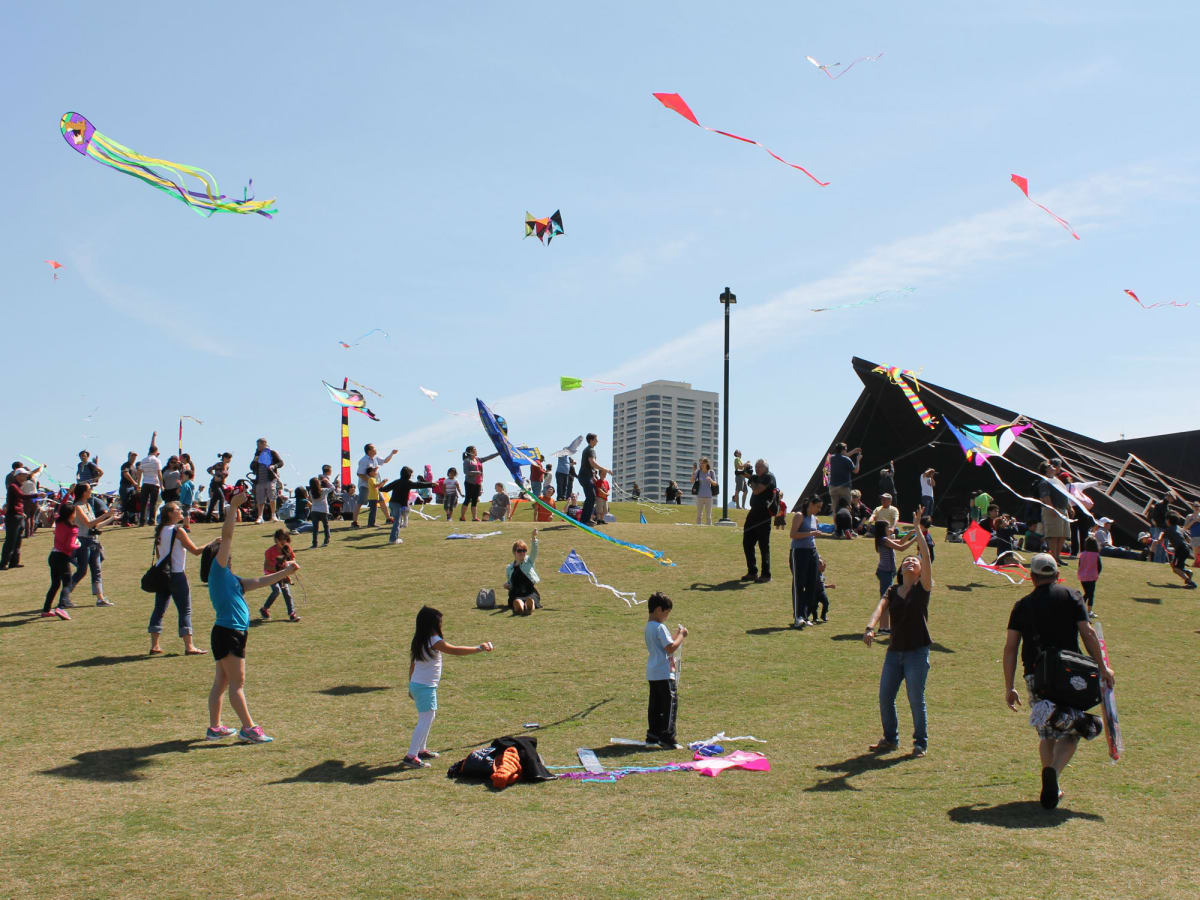 328 Hermann Park Kite Festival March 2014