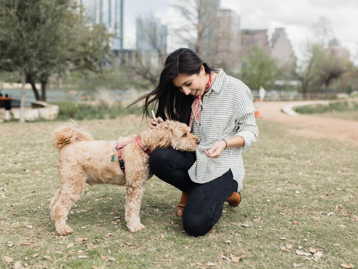 Medici dog-friendly SXSW