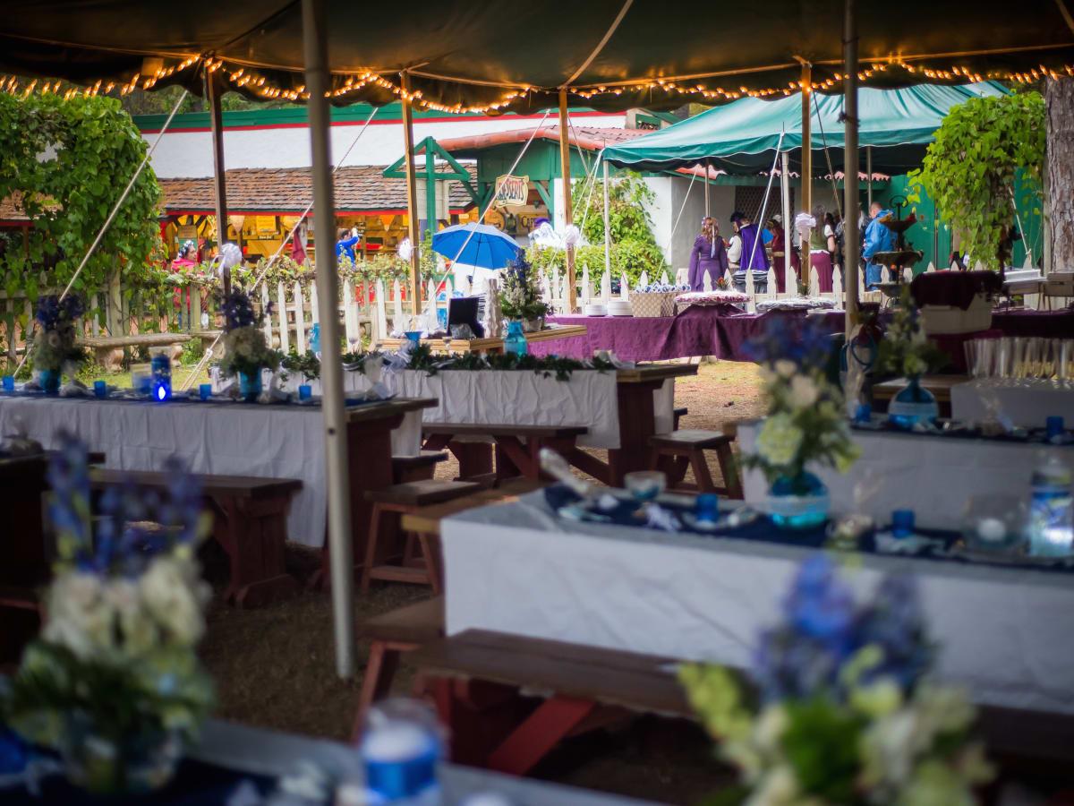 Renaissance Festival Weddings, Feb. 2016 Italian Village