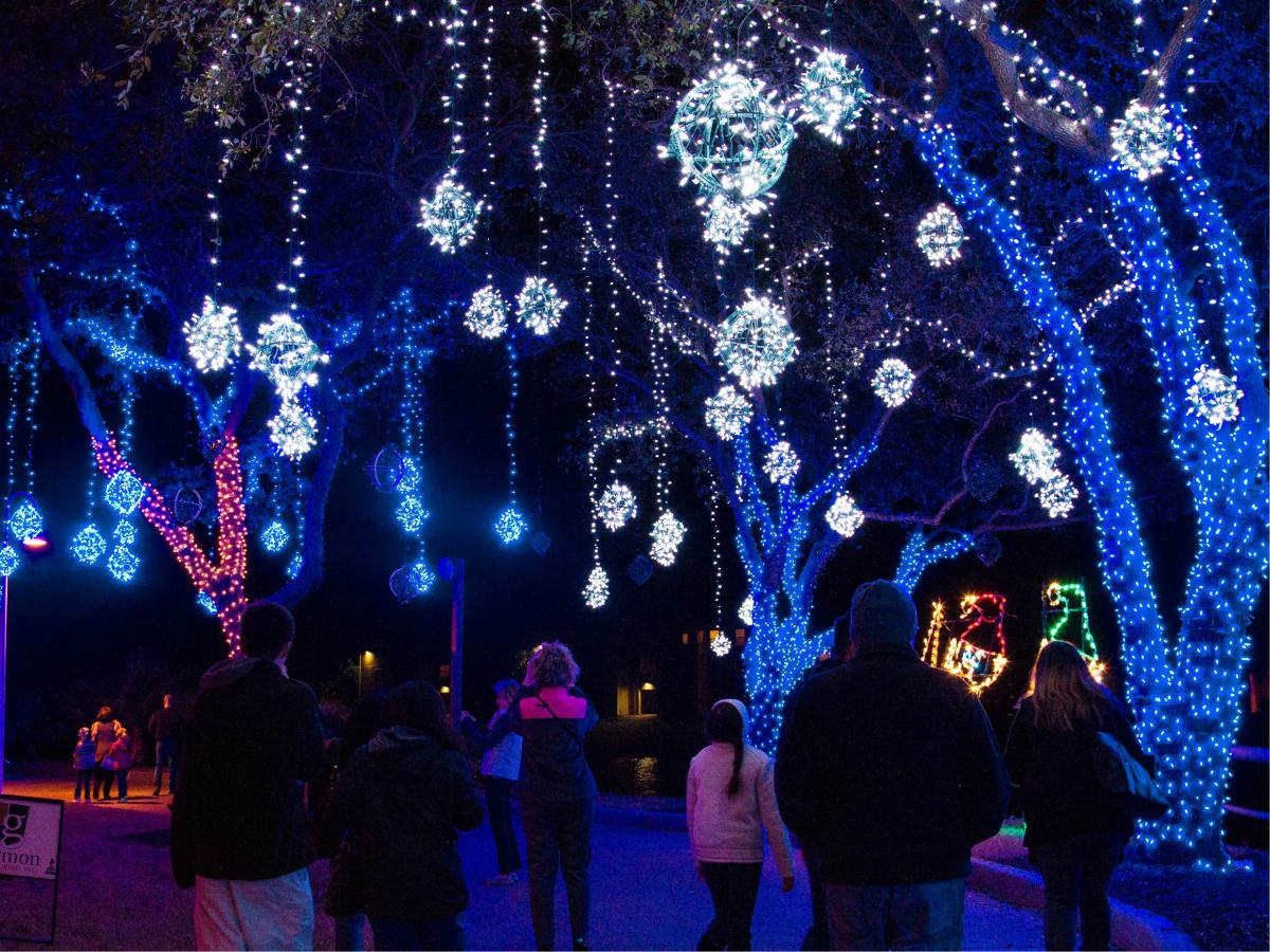 Festival of Lights at Moody Gardens