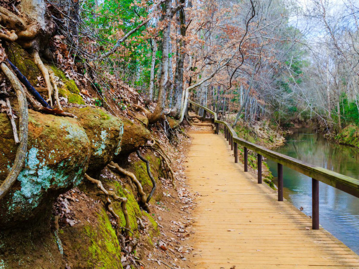 Nature trail in Nacogdoches