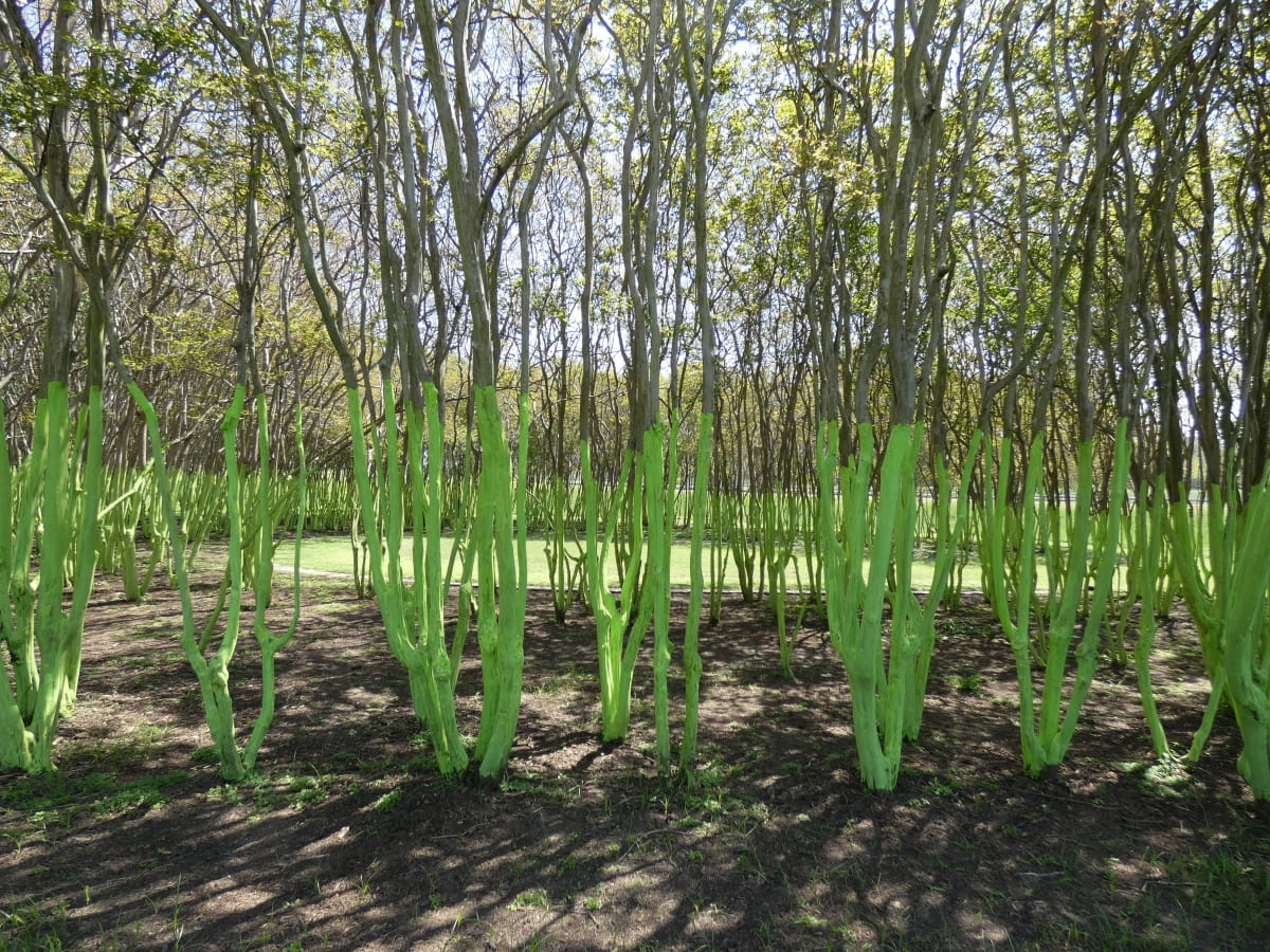 Memorial Green Trees