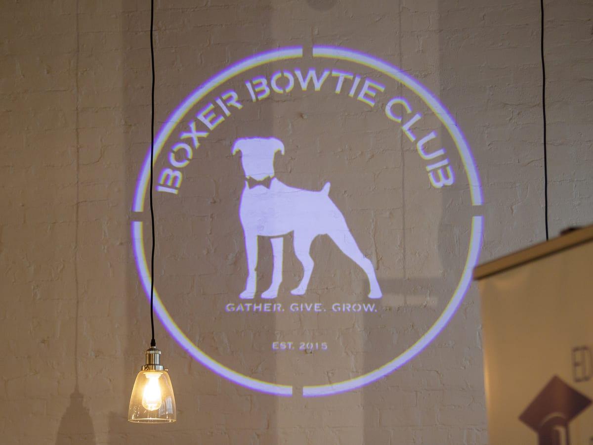 Dallas_Boxer Bowtie