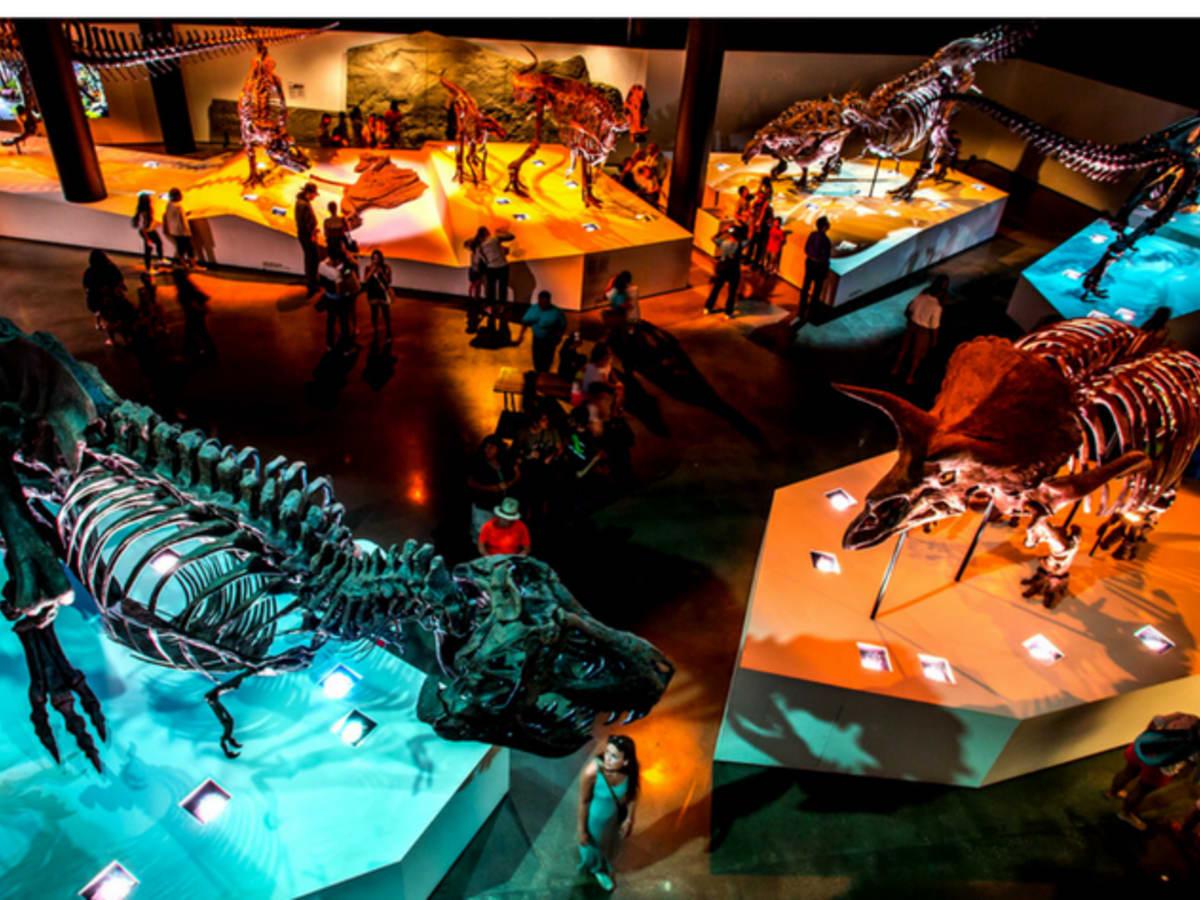 Houston Museum Pass