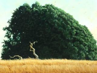 Carolyn Garcia Gallery presents Texas Naturally