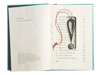 Sondra Sherman / Great Ideas of Science Pendant