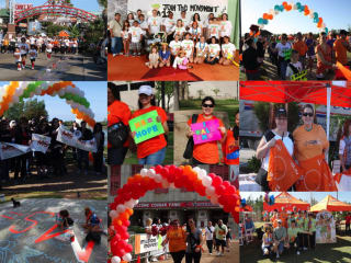 2012 Walk MS: Houston