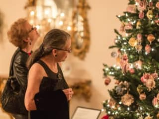 Holiday Home Tours at Rienzi