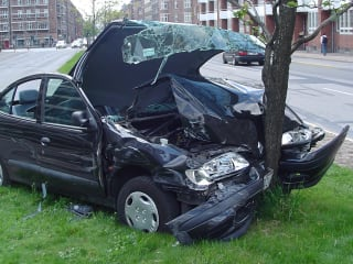 News_car_crash_tree