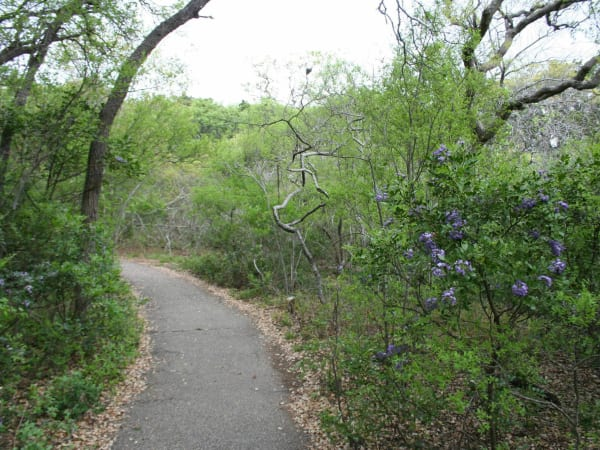San Antonio hiking hike bike trail park outdoors 2015