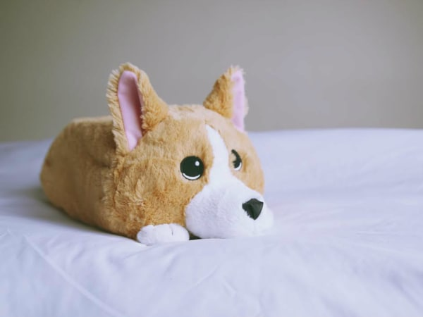 Waffles Corgi memory foam stuffed animal