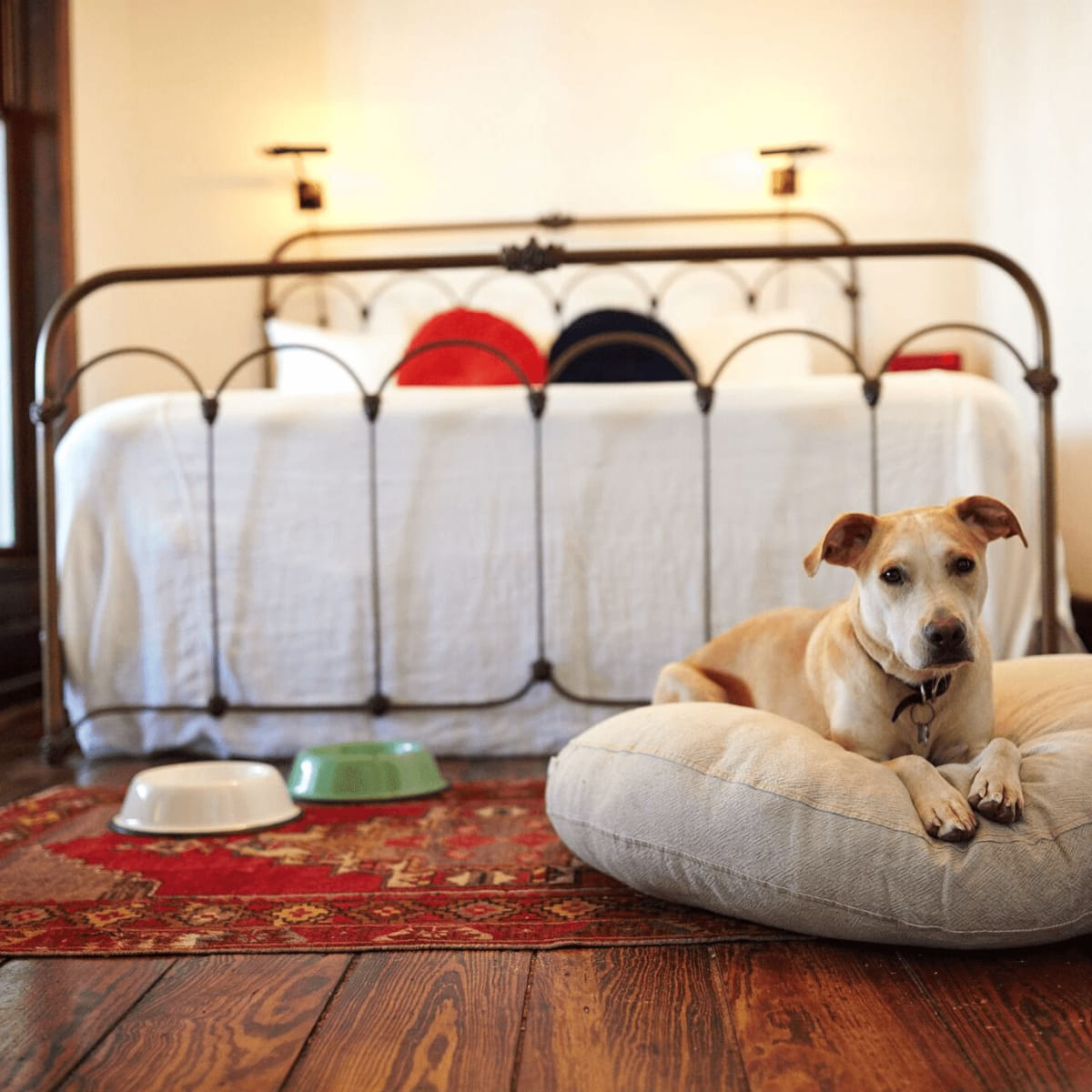 The 10 best Texas hotels for a pet-friendly vacation - CultureMap ...