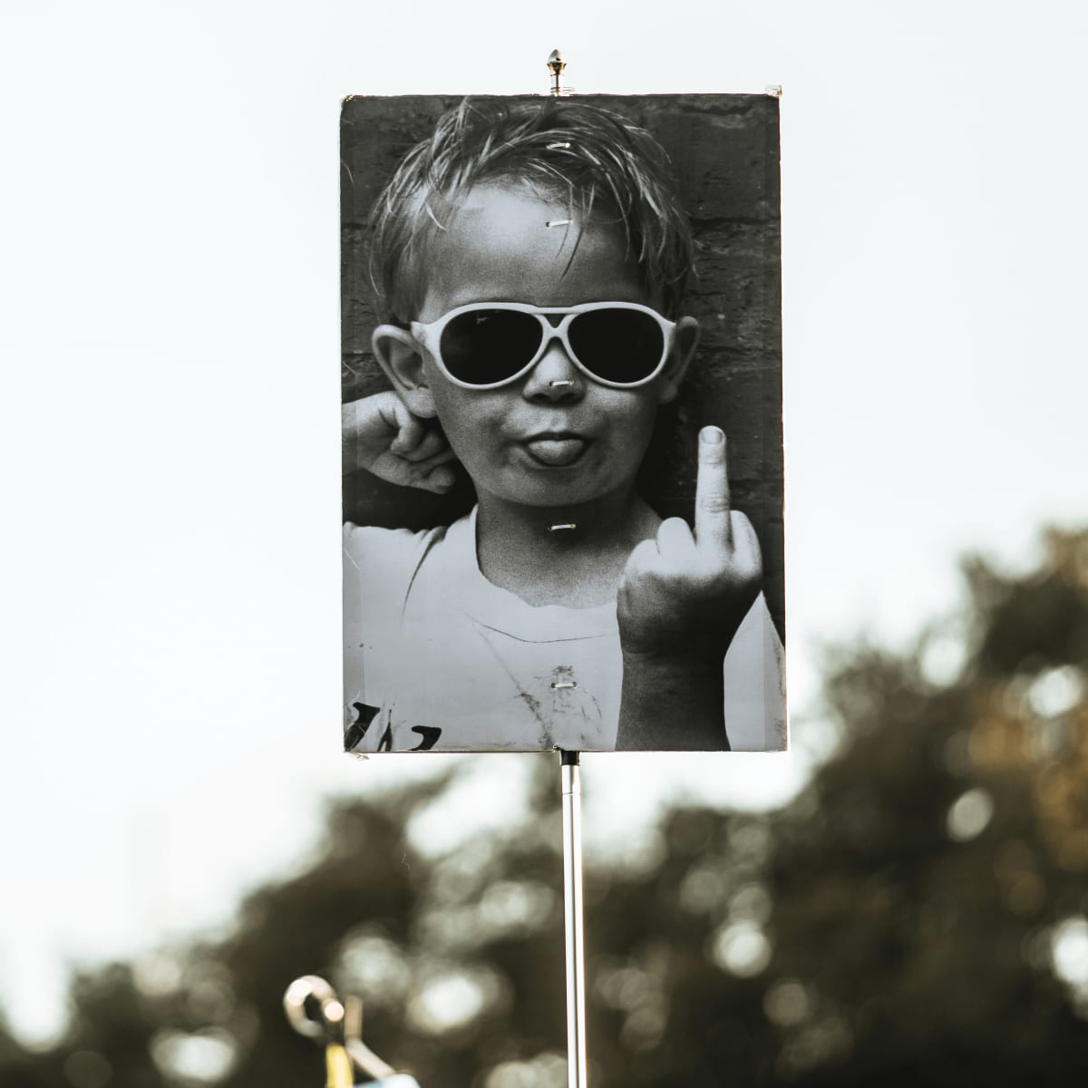 ACL Austin City Limits Music Festival 2016 flags kids middle finger