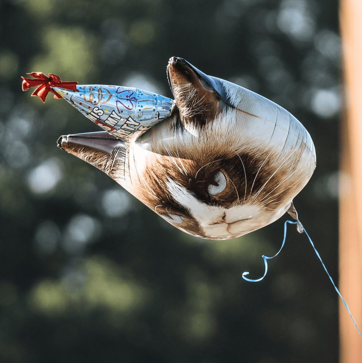 ACL Austin City Limits Music Festival 2016 flags Grumpy Cat balloon