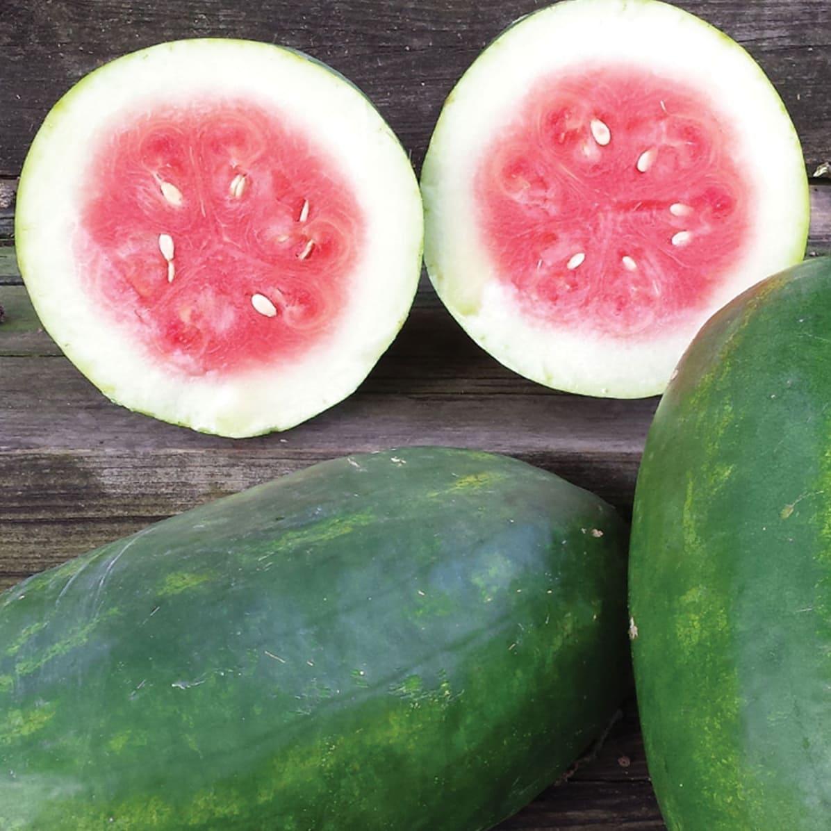 Photo of watermelon
