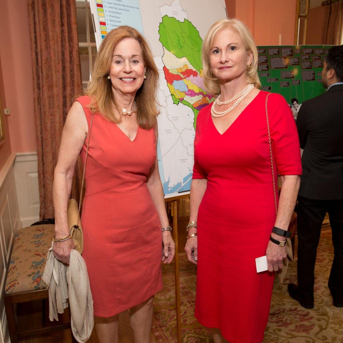 Houston, Bayou Preservation Association Anniversary Luncheon, May 2016, Angela Canghin, Barbara Byrd