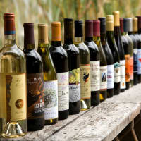 Texas Wine Talk & Tasting