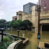 Houston, Hurricane Harvey, flood photos, The Wortham