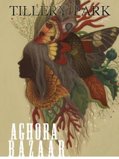 Aghora Bazaar art market at Tillery Park