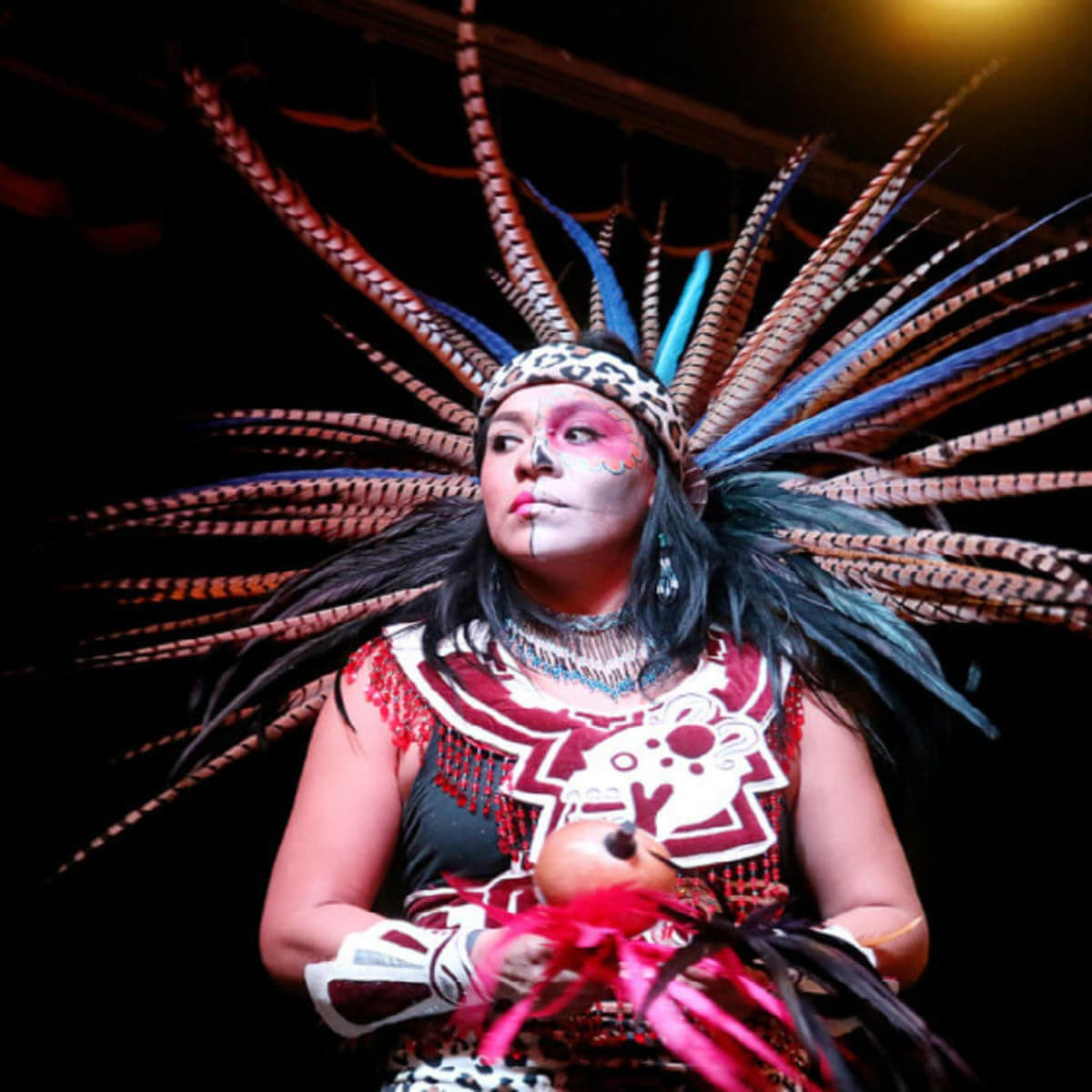 MECA presents Día de los Muertos Festival