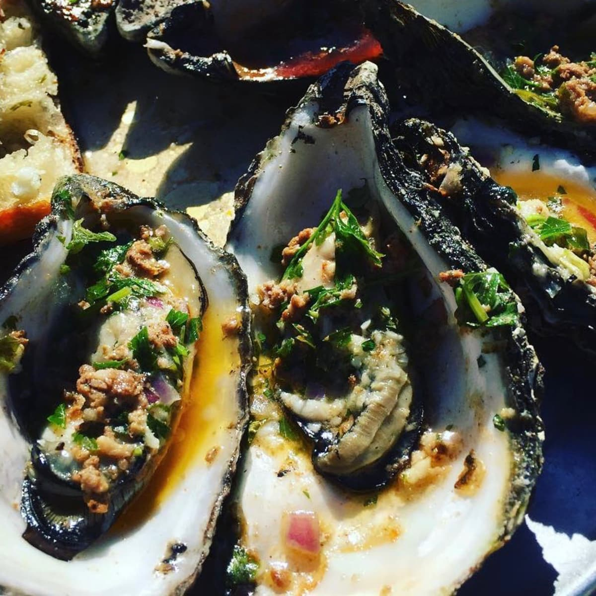 Nobie's roasted oysters