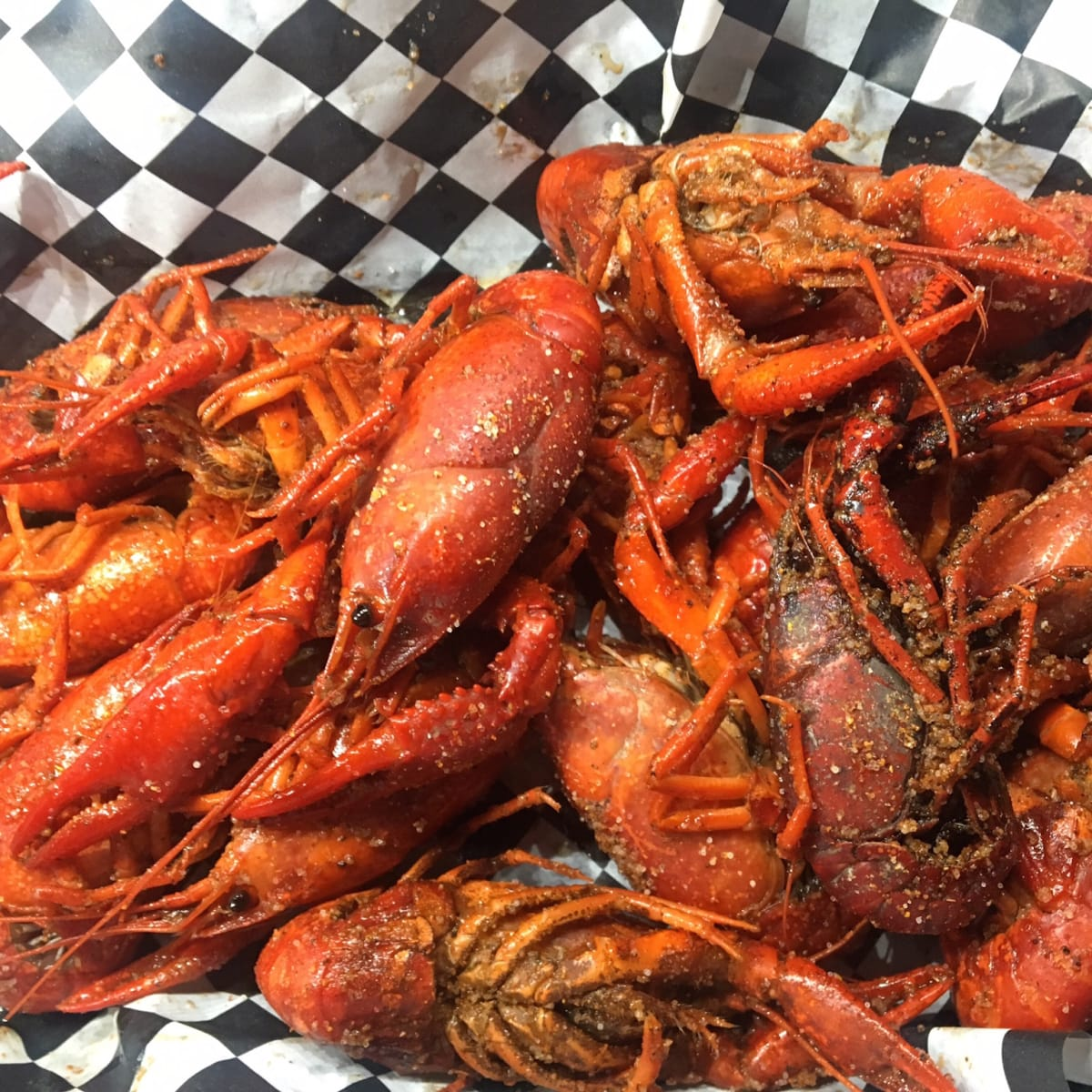 The Barking Pig crawfish