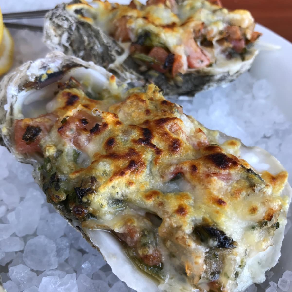 Beaver's Westheimer barbecue oysters