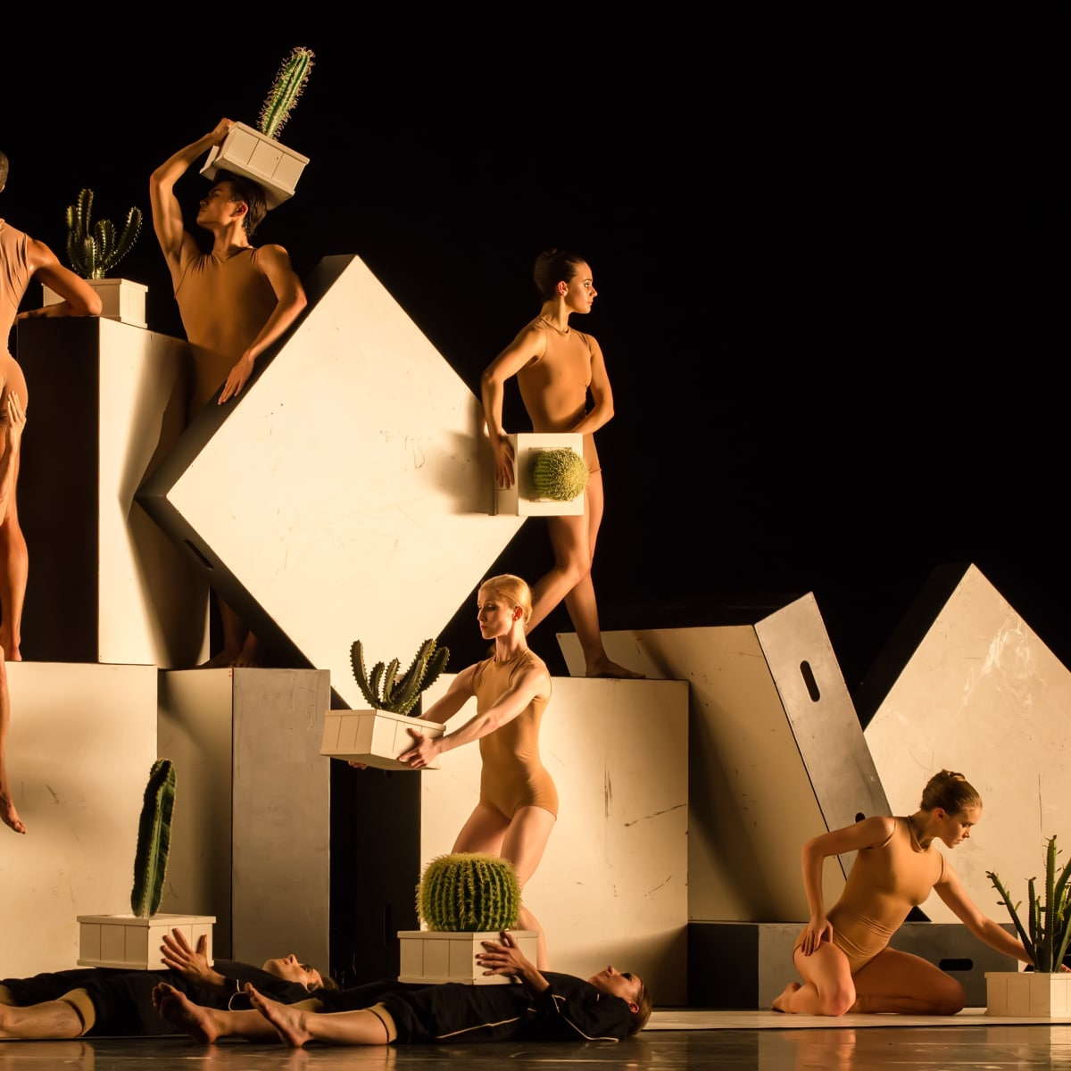 artists of Houston Ballet in Cacti
