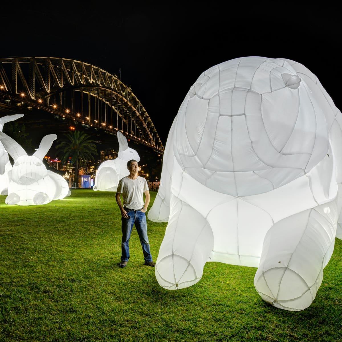 Bunnies Intrude art installation 1600 Smith