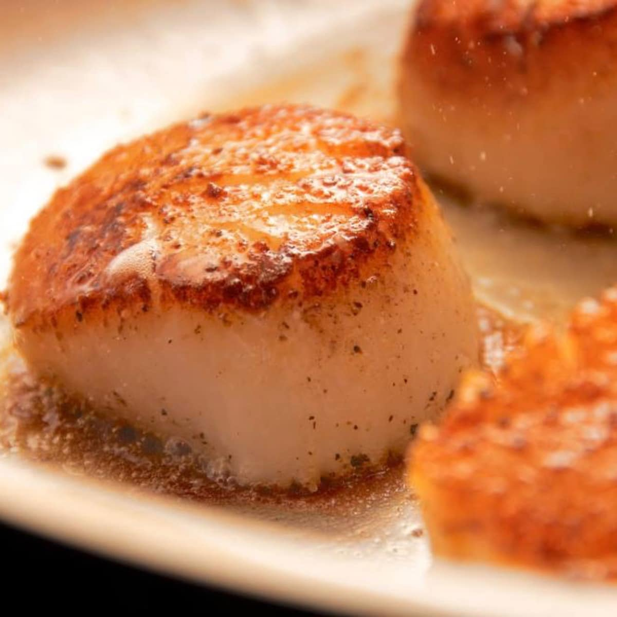 Dining out for Life Charivari scallop