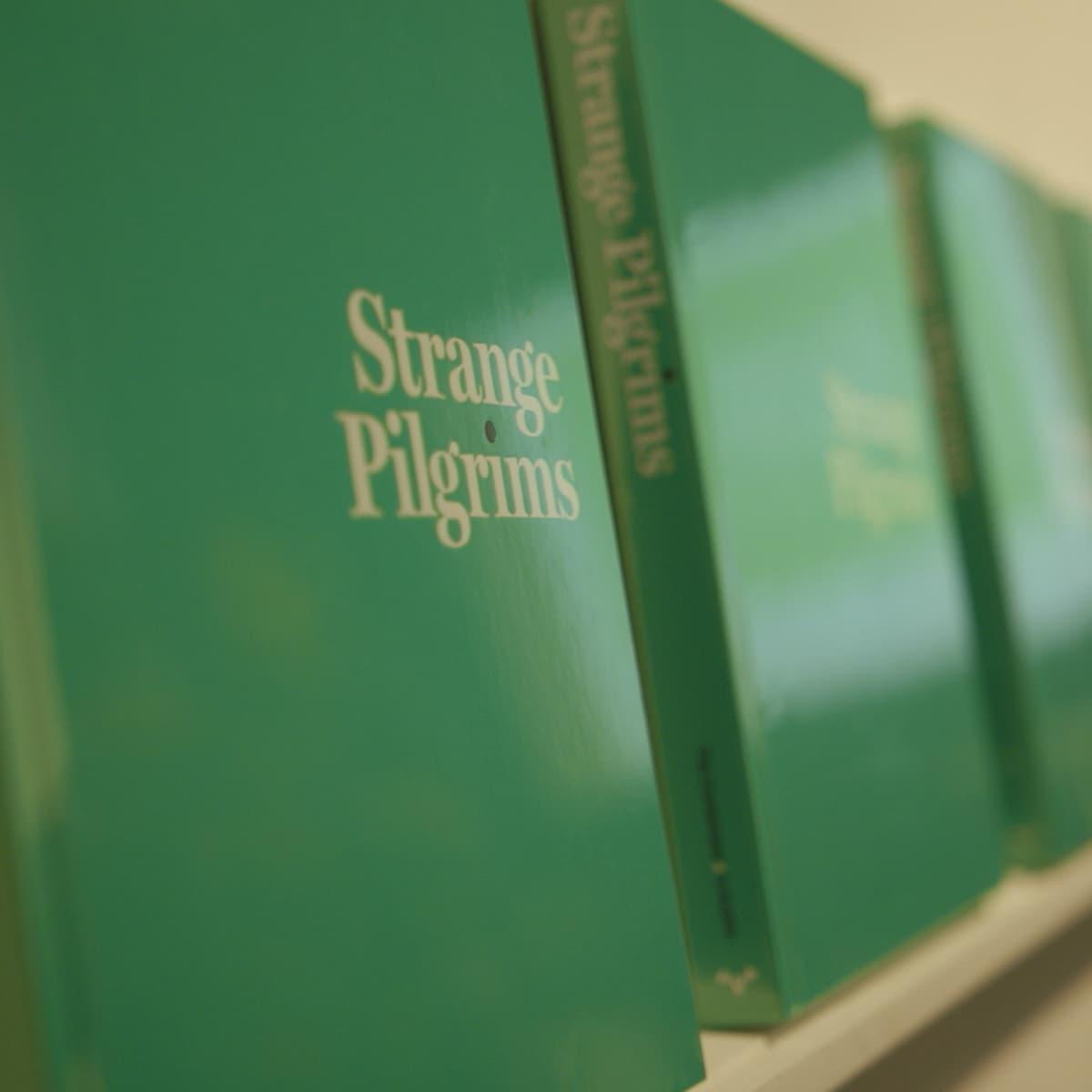 KLRU PBS Arts in Context Strange Pilgrims Contemporary Austin Gabriel Garcia Marquez book catalogue