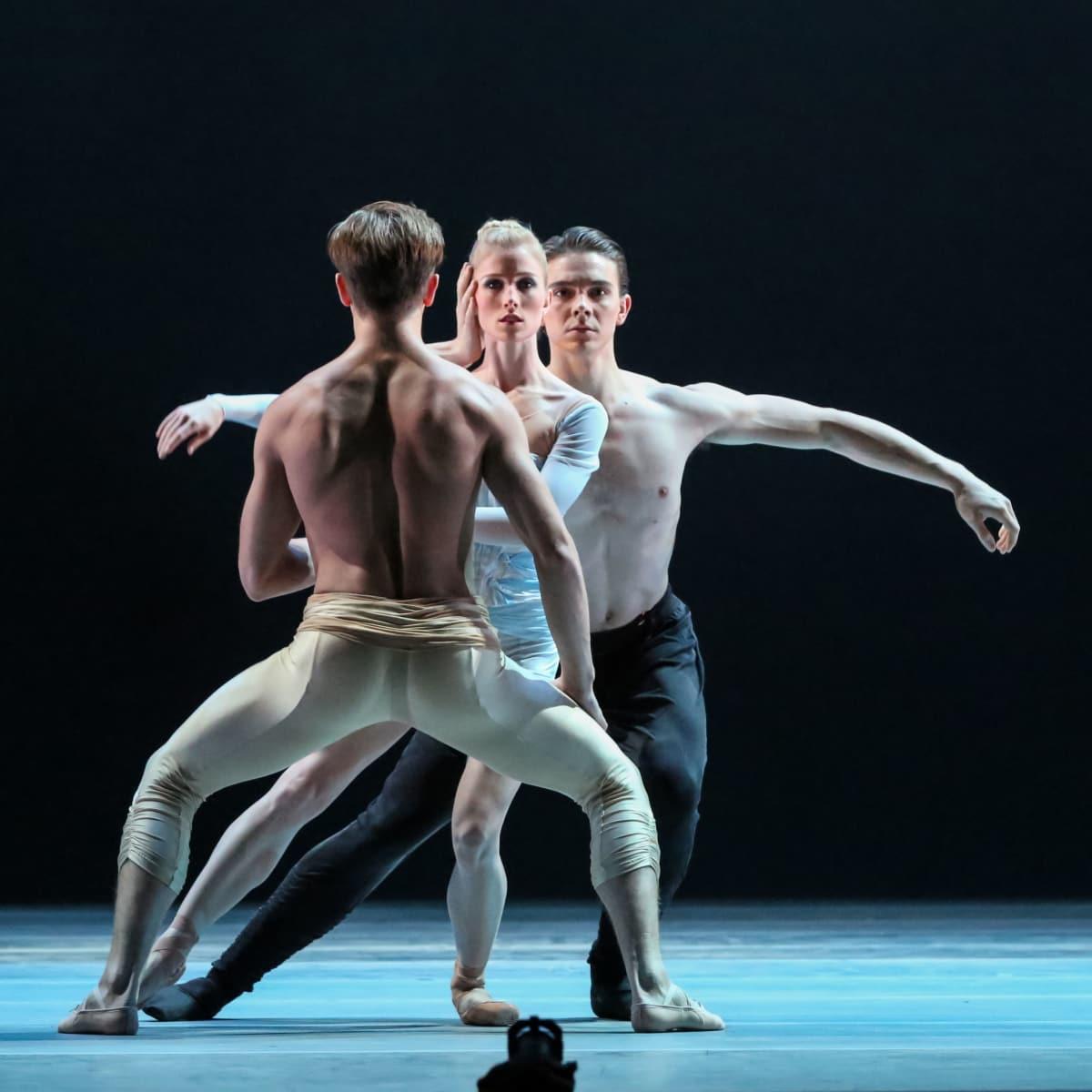 Artists of Houston Ballet Ballet in Reveal