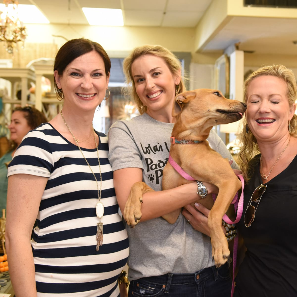 News, Shelby, Barks & Bubbles, Memorial Antiques, July 2015, Rachel Nolan, Jenny Thompson, Courtney Duperie, Sandy