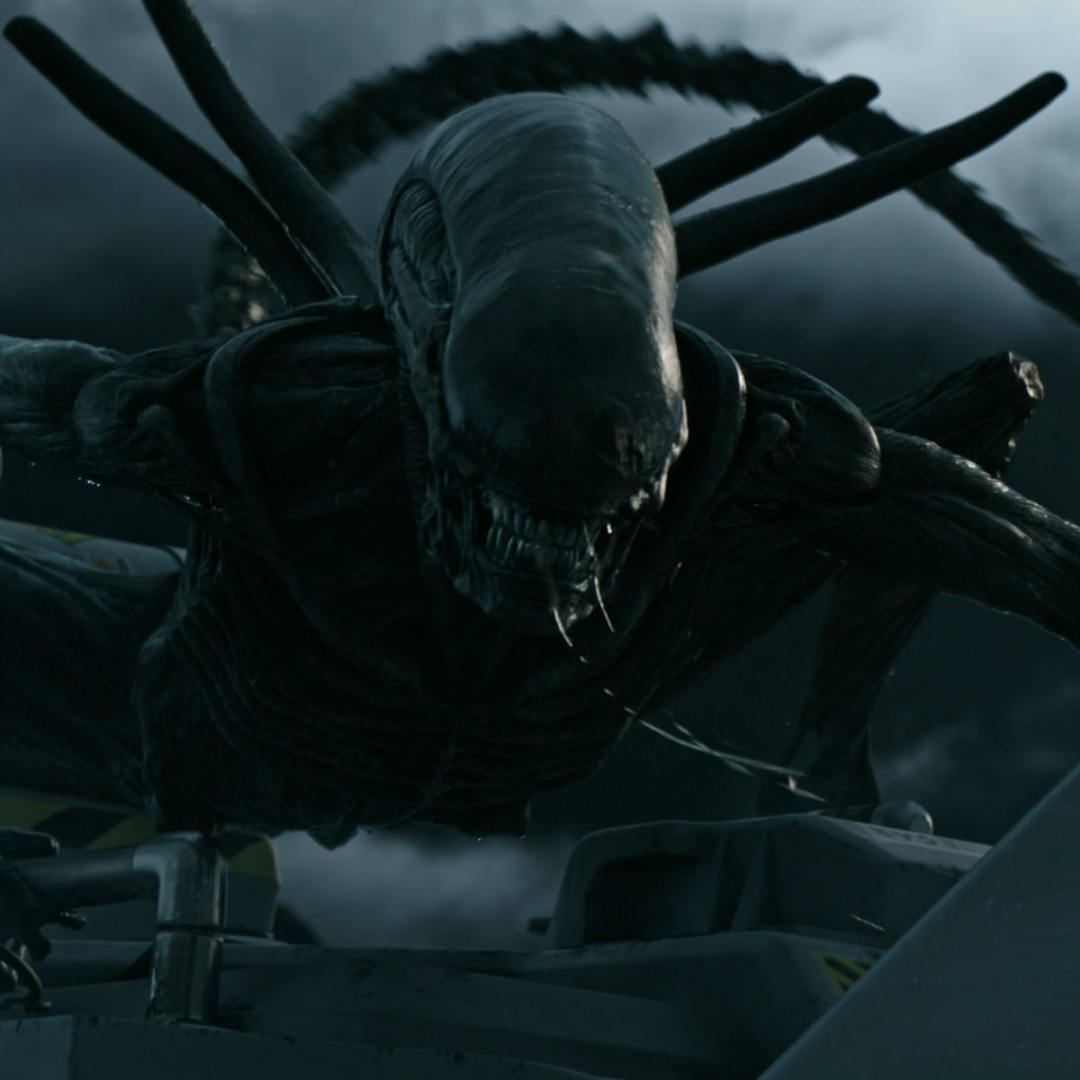 Alien in Alien: Covenant