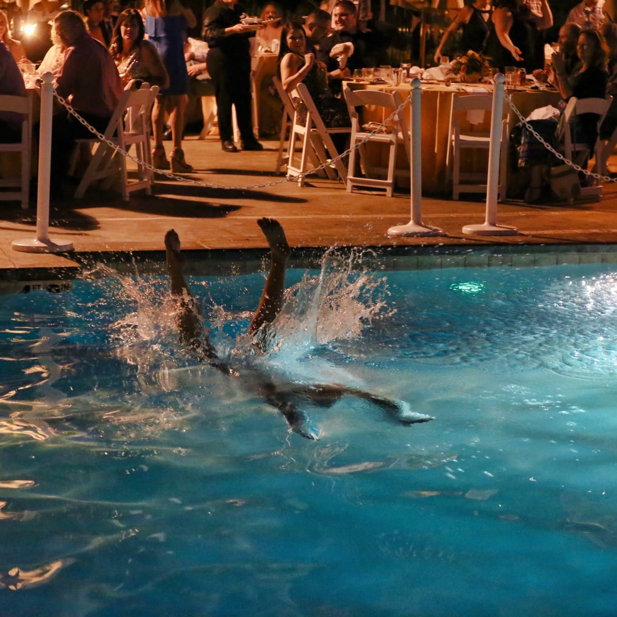 Auctioneer dives into pool at Nuzzles Barking Ball
