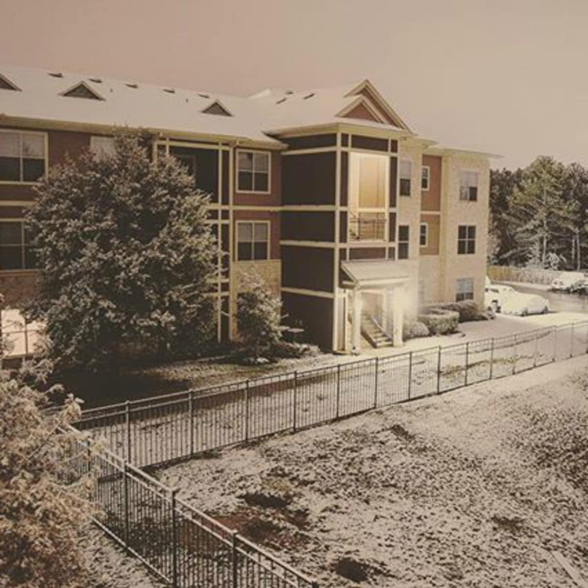 Snow in the Houston Woodlands