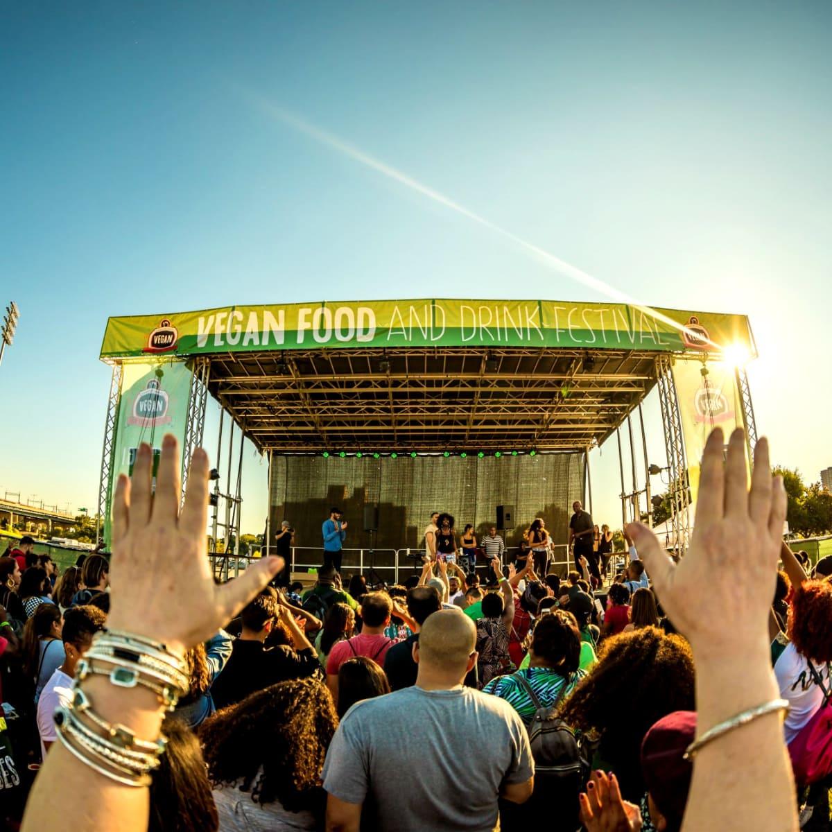 Vegandale Festival concert shot