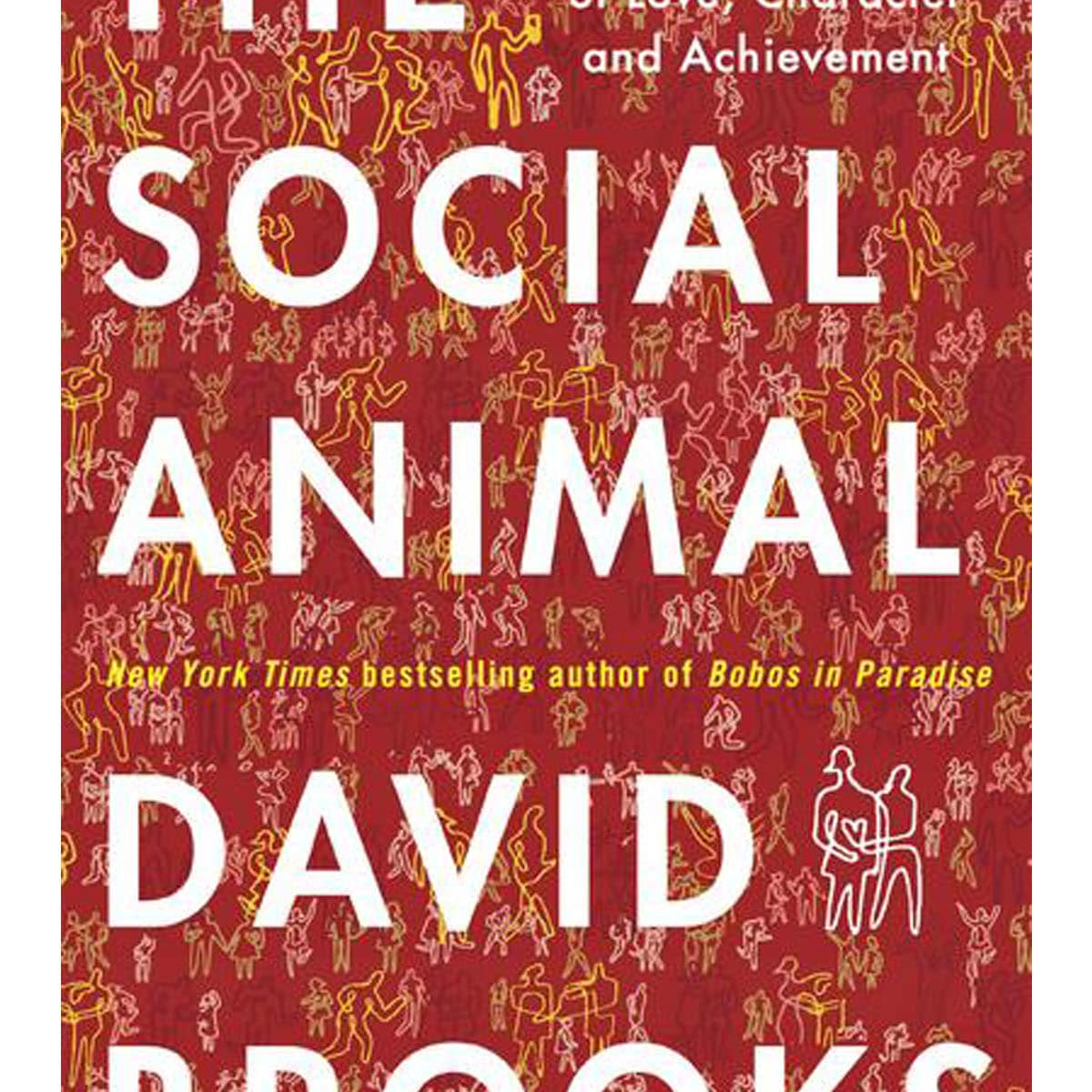 News_Book_The Social Animal_by David Brooks